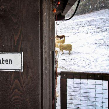 Innen Winter 27, Ferienchalet Feichtinger, Prigglitz, Niederösterreich, Niederösterreich, Österreich