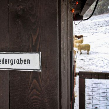 Inside Winter 27, Ferienchalet Feichtinger, Prigglitz, Niederösterreich, Lower Austria, Austria