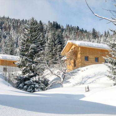 Außen Winter 21, Chalet Gams, Annaberg - Lungötz, Salzburger Land, Salzburg, Österreich