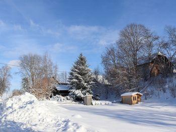 Berghütte Menardi - Upper Austria - Austria