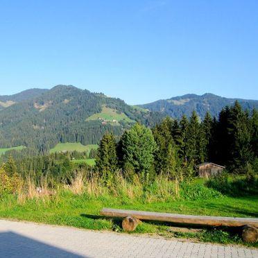 Innen Sommer 2, Bauernhaus Schwalbenhof, Wildschönau, Tirol, Tirol, Österreich